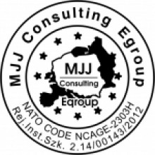 MJJ Consulting Egroup