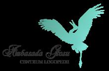 Ambasada Głosu - Centrum Logopedii