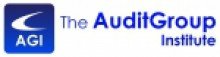 The AuditGroup Institute